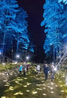 Biķernieku mežs – Svētku rotā